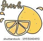 fresh lime or lemon slice  juicy | Shutterstock .eps vector #1955040493