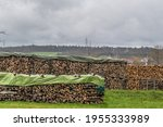 Stacked And Covered Firewood In ...