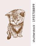 sepia vector illustration of... | Shutterstock .eps vector #1955708899