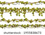 ivy seamless borders. set liana ...   Shutterstock .eps vector #1955838673