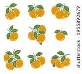 mandarin set. collection icons... | Shutterstock .eps vector #1955892679
