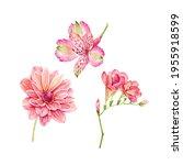 Set Of Watercolor Garden Pink...