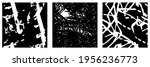 collection of black and white... | Shutterstock .eps vector #1956236773