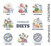 types of diets and nutrition... | Shutterstock .eps vector #1956269806