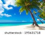 Dream Scene. Beautiful Palm...