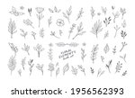 hand drawn floral elements.... | Shutterstock .eps vector #1956562393