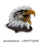 Bald Eagle Head Portrait From A ...