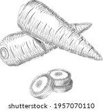 hand drawn carrots set for... | Shutterstock .eps vector #1957070110