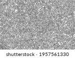 organic macro texture of... | Shutterstock .eps vector #1957561330