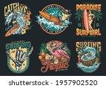 surfing vintage colorful labels ... | Shutterstock .eps vector #1957902520