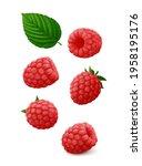 Set Of Single Raspberry Fruits...
