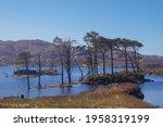 Loch Assynt In The Scottish...