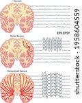 medical illustration of the... | Shutterstock .eps vector #1958604559