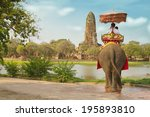 tourists on an elephant ride... | Shutterstock . vector #195893810