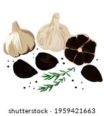 black garlic vector stock...   Shutterstock .eps vector #1959421663