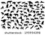Tiger And Lion Silhouette...