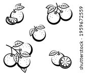 oranges set. collection icons... | Shutterstock .eps vector #1959672559