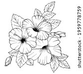 hibiscus flowers drawing and... | Shutterstock .eps vector #1959778759