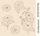 hand drawn collection of... | Shutterstock .eps vector #1959795790