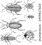 decorative beetles  graphics on ... | Shutterstock .eps vector #1959817633