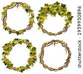 ivy frames. wreaths liana... | Shutterstock .eps vector #1959950896