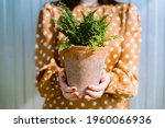 Woman Holding Green Nephrolepis ...