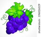 cluster blue grapes with green... | Shutterstock .eps vector #196026329
