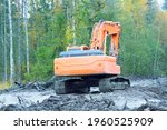 Excavator Operation In A Swampy ...