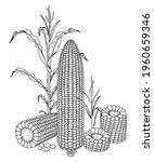 set of corn hand drawn... | Shutterstock .eps vector #1960659346