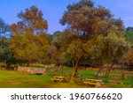 View Of A Picnic Area With...