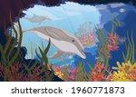 Common Bottlenose Dolphin...