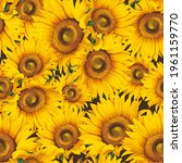 seamless pattern with sunflower ... | Shutterstock . vector #1961159770