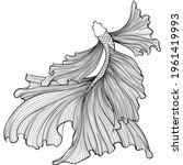 betta fish or siamese fighter... | Shutterstock .eps vector #1961419993