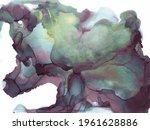 chameleon color  brown... | Shutterstock .eps vector #1961628886