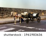 Carriage Horse In The Wall Of...