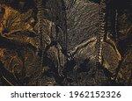 luxury black golden metal... | Shutterstock .eps vector #1962152326