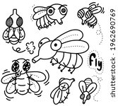 drawing cute  doodle fly vector ... | Shutterstock .eps vector #1962690769