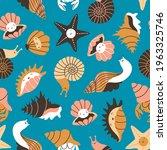 Sea Shells  Snails And Starfish ...