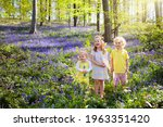 Kids Playing In Bluebell Woods. ...