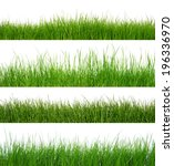 green grass isolated on white... | Shutterstock . vector #196336970