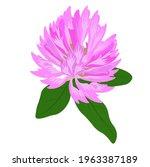 meadow clover vector stock... | Shutterstock .eps vector #1963387189
