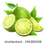 c,citrus,cross,cut,food,fresh,fruit,green,half,healthy,illustration,juicy,leaf,lemon,lime