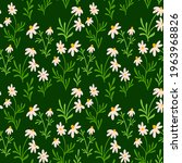 chamomile and daisy seamless...   Shutterstock .eps vector #1963968826
