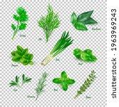 green herbs set on transparent... | Shutterstock .eps vector #1963969243