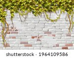 wall branches liana  ivy....   Shutterstock .eps vector #1964109586