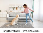 Small photo of Dog Training Commands Concept. Positive black girl teaching pet at home in living room, playing with golden retriever and rewarding him with treats, standing indoors and giving animal food