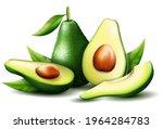 realistic green avocado for...   Shutterstock .eps vector #1964284783