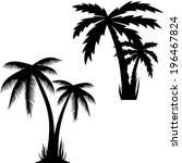 illustration of palm trees .   Shutterstock . vector #196467824