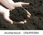 hands holding a pile of soil... | Shutterstock . vector #196494584