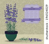 lavender in a pot  violet card... | Shutterstock .eps vector #196524029